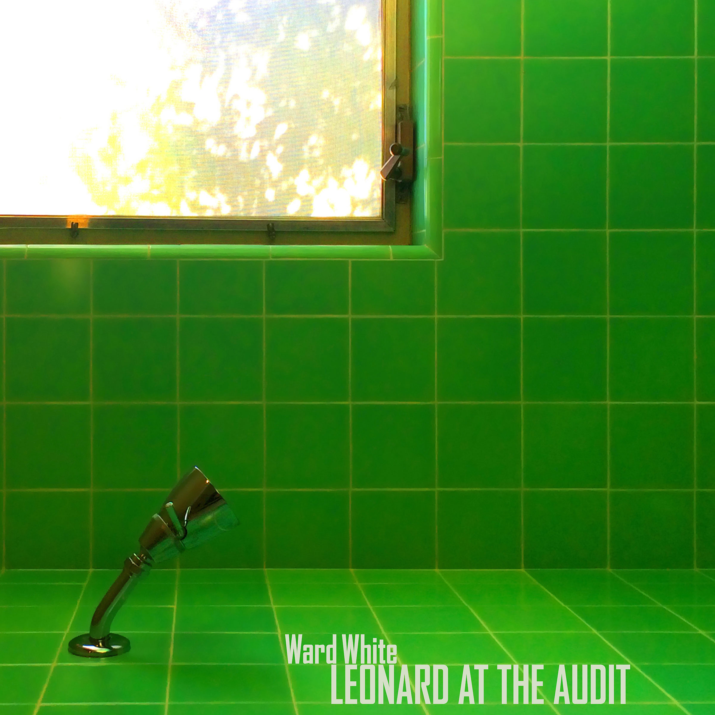 Leonard at the Audit